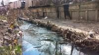 Преобразится ли река Лыбидь стараниями киевских активистов